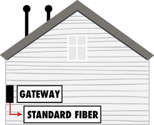 6 feet Fiber Extension